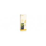 Meritene junior energy (125 ml 4 botellas vainilla)