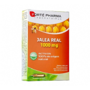 Forte jalea real 1000 mg (20 ampollas x 10 ml)