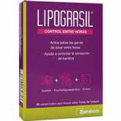 Lipograsil control entre horas 30 comp mastic fr